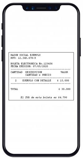 Recuerda avisarnos qué sistema de boleta electrónica utilizarás (gratuito del SII o con cual proveedor privado), para solicitarle la información en relación a dichas ventas y poder hacer de la mejor forma tu Formulario Mensual de Impuestos (F29).