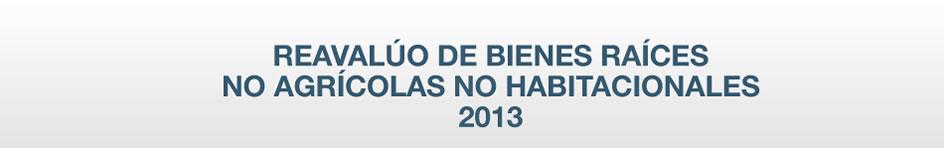 Reavalúo de Bienes Raíces No Agrícolas 2013